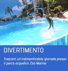 zoomarine offerte